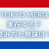 東京MERとは?実在する?エムイーアールの医療は本当にあるの?